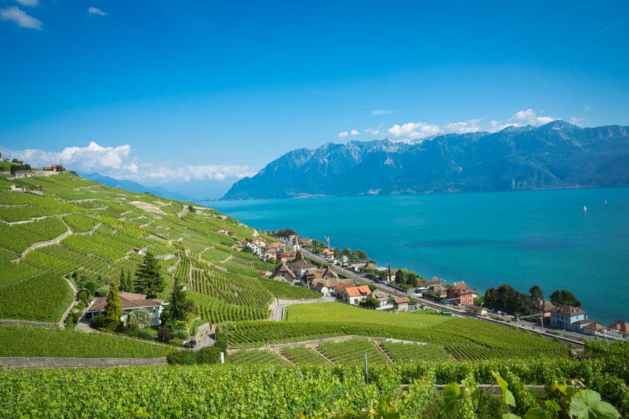 La région du Lavaux, canton de Vaud, Suisse