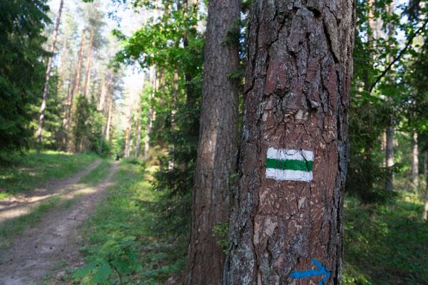 Green velo - Signalisation