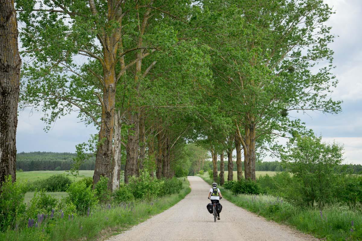 parc naturel deKnyszyn, Podlachie, Pologne - Green velo